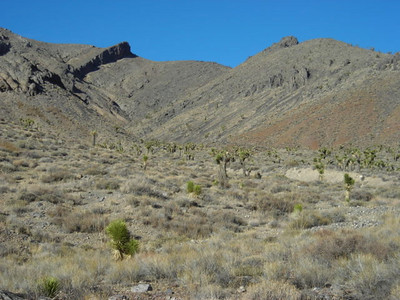 No trail to follow  The canyon opened up here and we had to route-find our way back to the truck we had left at the end of the canyon.