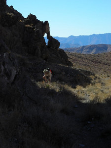 At Perdido Canyon now  Finally entering the wide canyon mouth. There is a small arch at the edge of the rock wall.