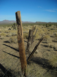 Fence posts in the desert.