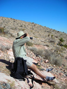 David trying to get photos of a blue bird in a yucca.