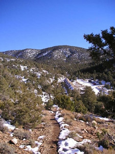 View of Kilns from Wildrose trail