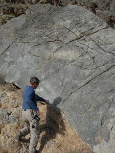 Joe examining the petroglyphs