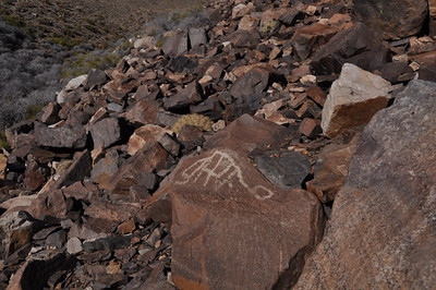 We found a nice petroglyph site, almost entirely abstract shapes.