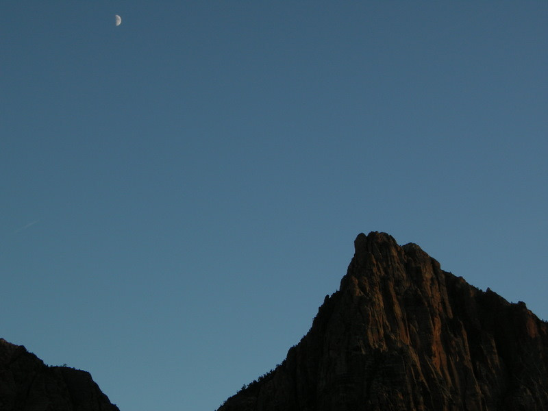 Sunset light in Zion