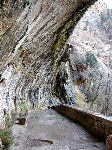 Under the Weeping Rock