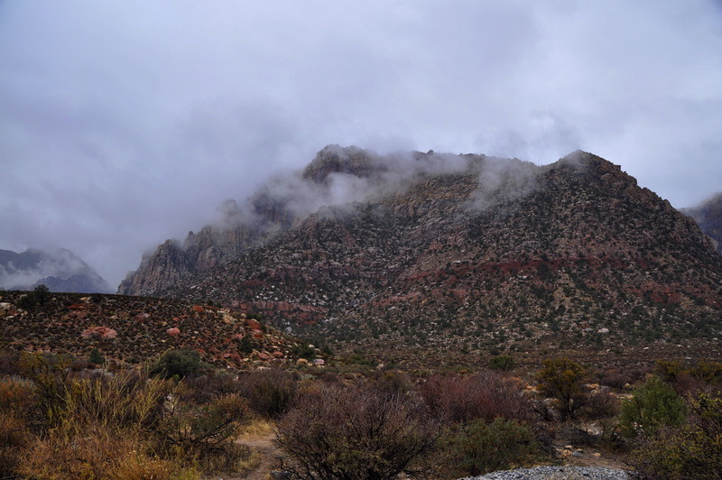 The rain made the desert smell so good.