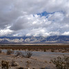 Between Pahrump and Shoshone