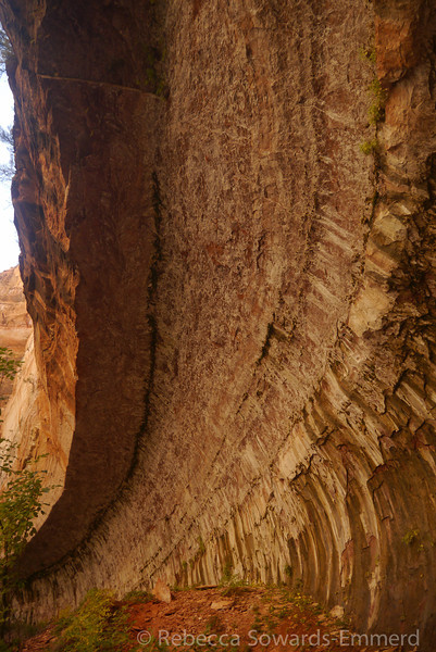 Curved canyon walls