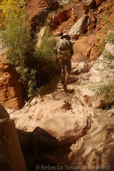 Heading back down canyon.