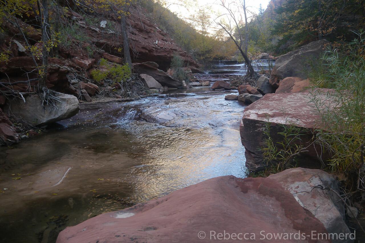 Creek below the terraces.