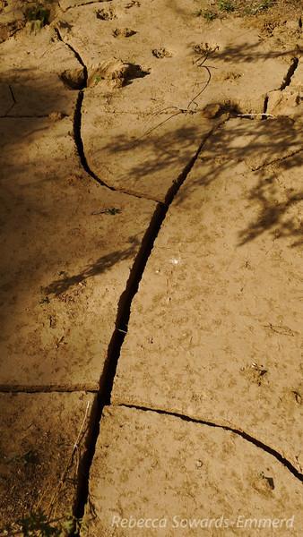 Kinda dry in the desert.