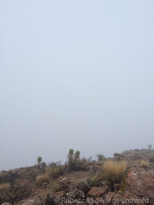 The lovely summit view.