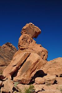 We walked over to balanced rock.