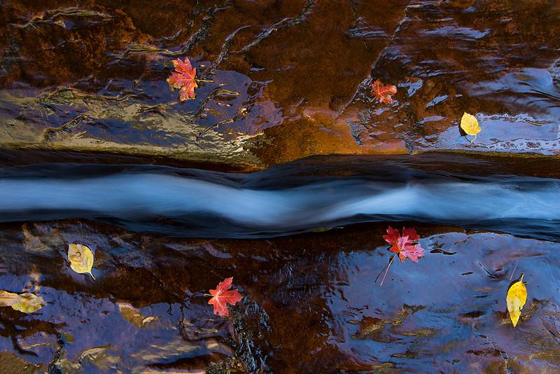 Utah, Zion National Park