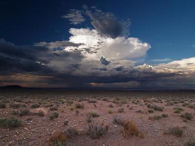 Desert Drama