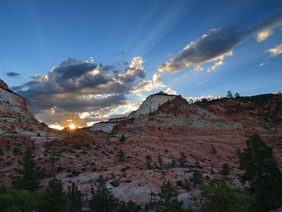 Morning Star - Zion National Park