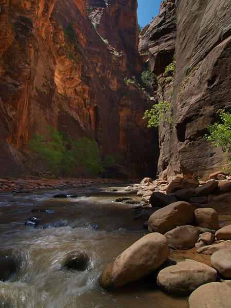 Patchwork Light - The Narrows - Zion National Park