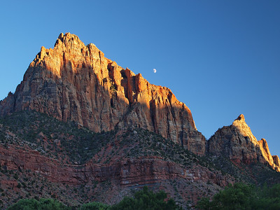 Moon over The Watchman - Zion National Park
