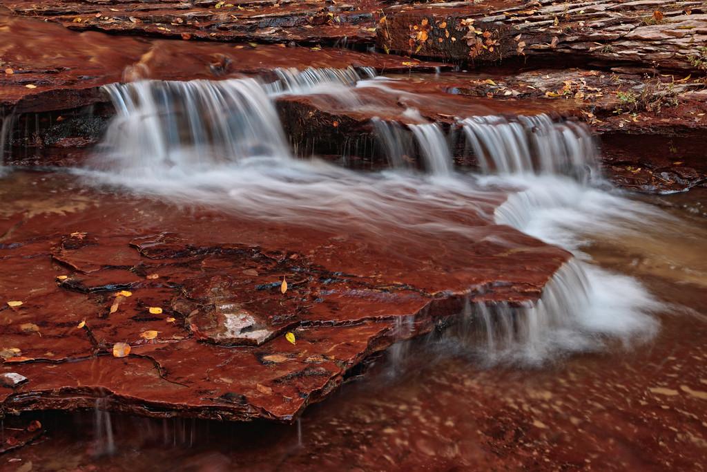 The Last Flow of Autumn