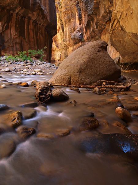 Narrows Flow - Zion National Park