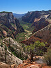 Observation Point - Zion National Park<br /> <br /> PHOTO NOT FOR SALE - FOR INFORMATIONAL PURPOSES ONLY