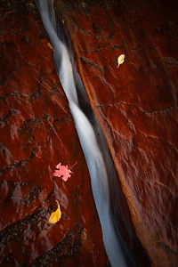 """- The Cutting Flow -  The """"Crack"""" at Zion National Park"""