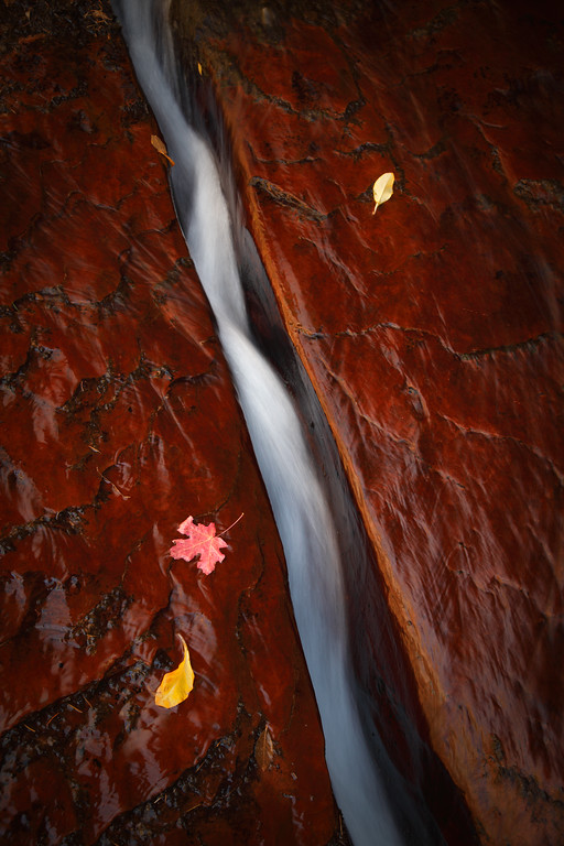 """- The Cutting Flow -<br /> <br /> The """"Crack"""" at Zion National Park"""