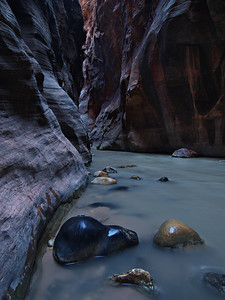 Filtered Light - The Narrows - Zion National Park