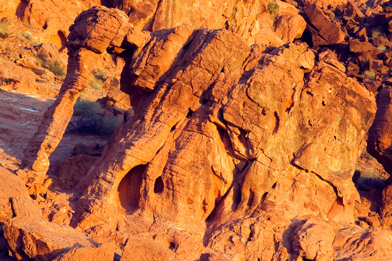 Elephant Rock, Valley of Fire State Park, Nevada.