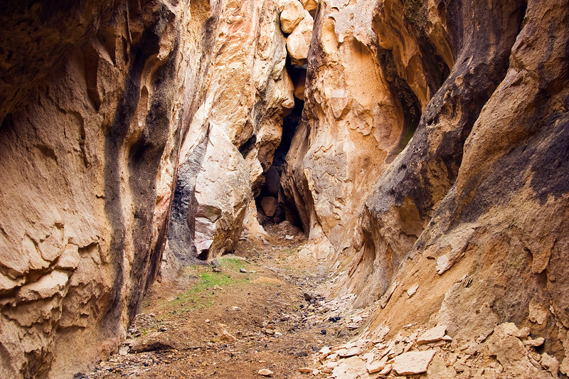 Slot canyon in Juniper Gulch, Leslie Gulch State Recreation Area, Oregon