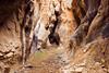 Slot canyon in Juniper Gulch, Leslie Gulch State Recreation Area, Oregon