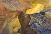 Rock detail in Juniper Gulch, Leslie Gulch State Recreation Area, Oregon