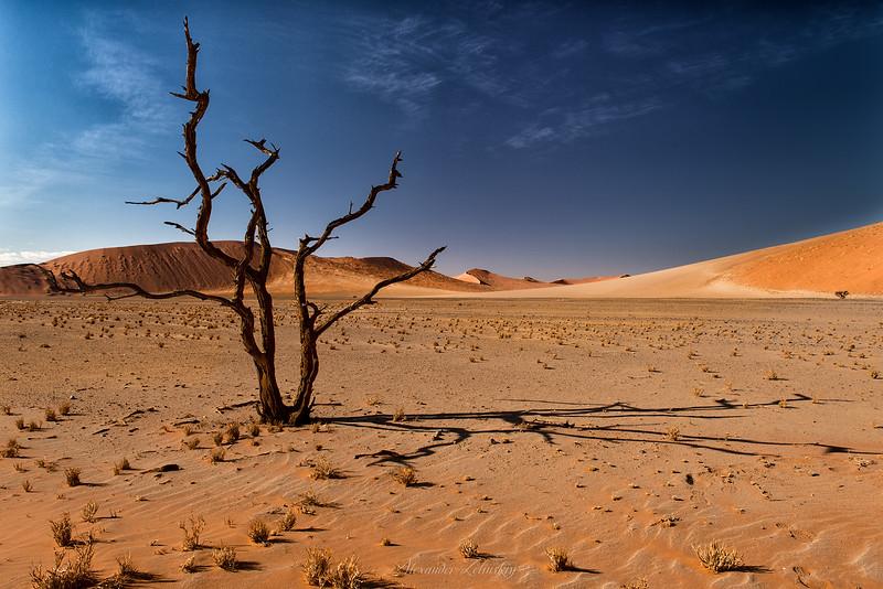 Sun-dial of Namib