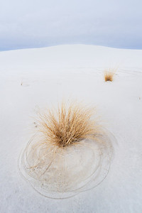 Circles in the Sand - Varina Patel