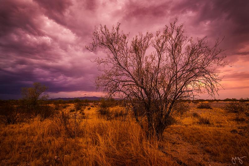 February 2018 Sonoran Desert. Stormy sunset over open desert, near the Hummingbird Springs Wilderness Area.
