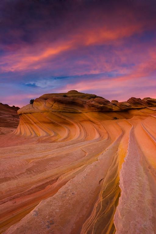 Perfect Sunset - Varina Patel