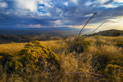 Tanque Verde Ridge Storm Light 2
