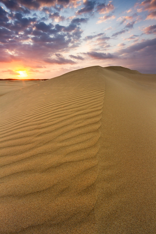 Morning on the Dunes