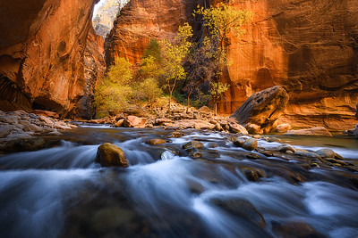 Incredible fall colors and glow in The Narrows - Utah