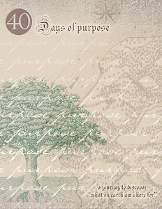 Circa Backup CD-124  CD:001GCCA  40 days of purpose.  This is stationary for the 40 days of purpose.