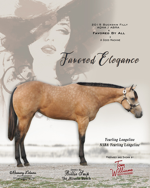 Display piece - Elegance filly