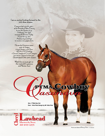 Cheryl - March ad