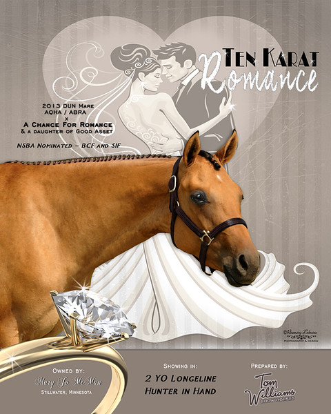 Display piece - Mary Jo Romance mare