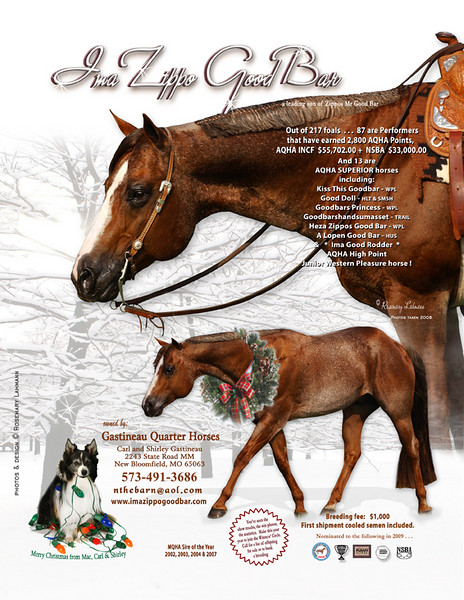 Ad for Gastineau Quarter Horses -<br /> December 2008 issues.