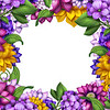 square floral banner frame, assorted flowers illustration