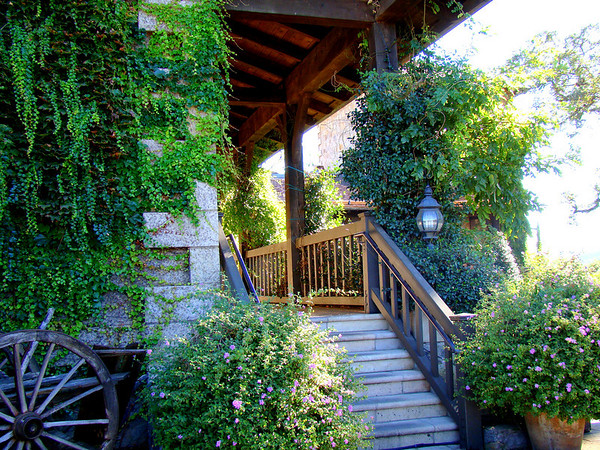 An enchanting garden alongside a winery in the Napa Valley.