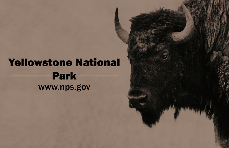 Billboard for Yellowstone National Park<br /> <br /> Photo by: Amber Lachniet