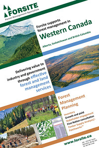 Forest Management Poster