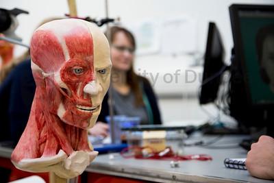 Forensic Art 2I3A3625