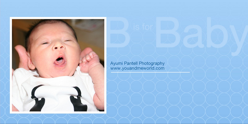 Baby - 03<br /> 4x8 Flat